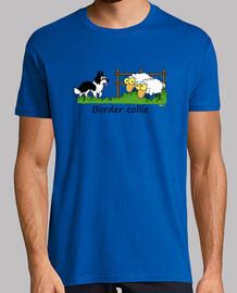 border vs sheep