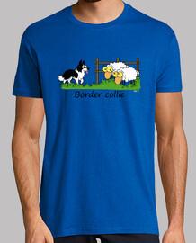 border vs sheeps