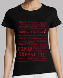 brian's life: romani ite domum