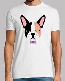 Bulldog français  femme