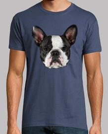 Bulldog Frances