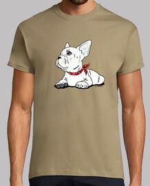 bulldog francese.