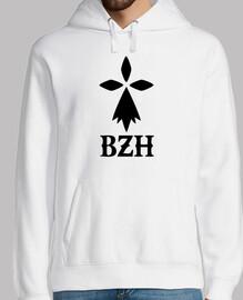 bzh breton breton