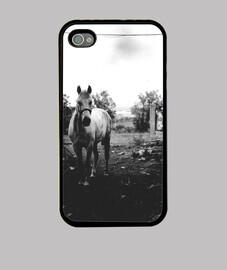 Caballo blanco Funda iPhone 4, negra