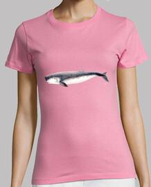Cachalote pigmeo camiseta mujer