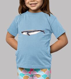 Cachalote pigmeo camiseta niño