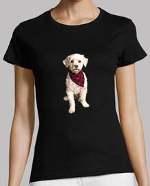Cachorro con bandana roja