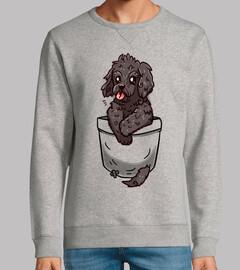 cachorro de bolsillo cockapoo