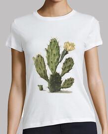 Cactus floreciente