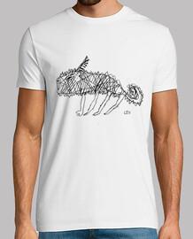 camaleus hombre blanco