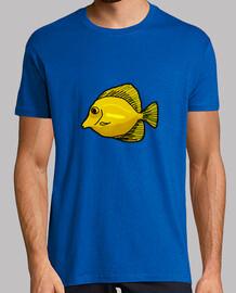 Camiseta / Zebrasoma flavescens
