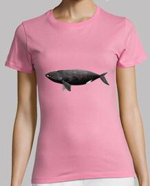 Camiseta Ballena franca del Atlántico
