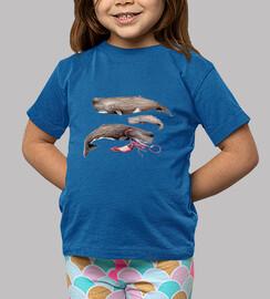 Camiseta cachalotes Niño, manga corta, azul royal