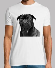 Camiseta de hombre con diseño de Perro Pug Carlino negro