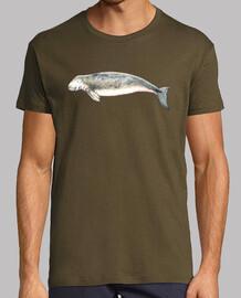 camiseta dugong (dugong dugong)