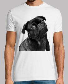 Camiseta hombre diseño Perro Carlino Pug