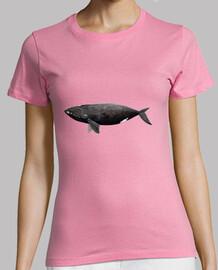 Camiseta mujer Ballena franca del Atlántico Ballena franca del Atlántico