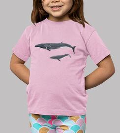 Camiseta niño niña Rorcual norteño