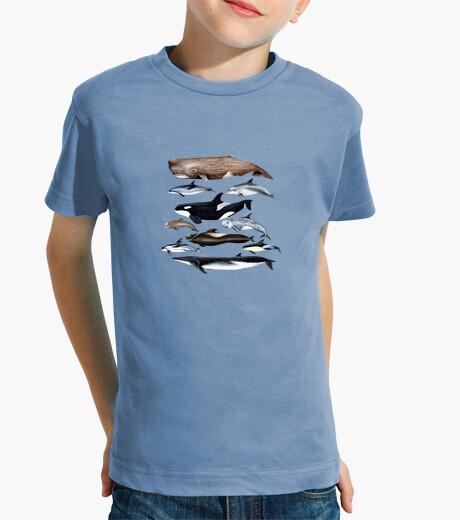 Ropa infantil Camiseta niño y niña Ballenas, cachalotes y delfines