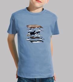 Camiseta niño y niña Ballenas, cachalotes y delfines