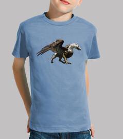 Camiseta niños Dragon grifo