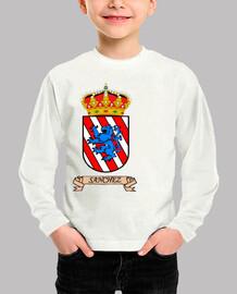 Camiseta niños Escudo Apellido Sanchez