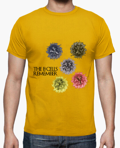 Camiseta The B-cells Remember clara HMC