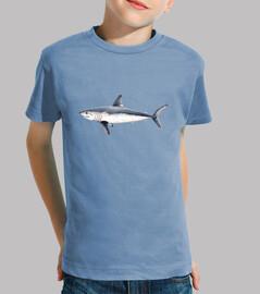 camiseta tiburón heringshai (lamna nasus)
