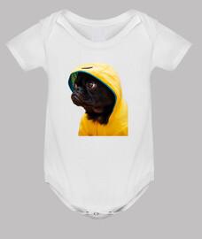 cane carlino pug impermeabile giallo film esso corpo