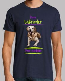 cane labrador, piccolo morso