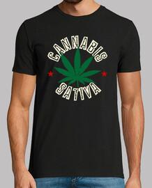 Cannabis Sativa Marihuana
