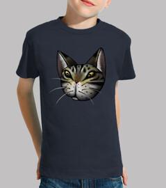 cara atigrado gato niños