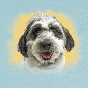 Camisetas Cara de perro feliz