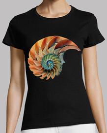 Caracola / Amonita / Nautilus / Fibonac
