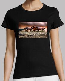 Carrera de caballos salvajes en la oril