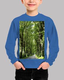 Carretera en el bosque