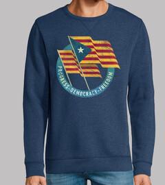 Catalonia Vintage Flags Emblem V01