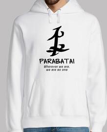 Cazadores de sombras: runa parabatai (n