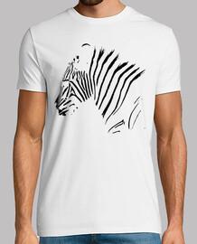 Cebra Animal Salvaje