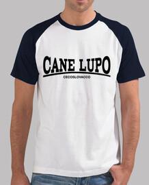 cecoslovacco gym cane lupo b / c boy