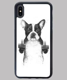 Censored dog