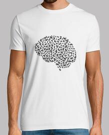 Cerebro de dinero