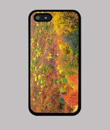 cespugli autunno