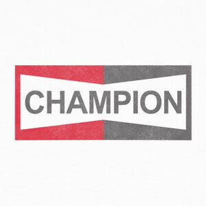 Tee-shirts CHAMPION  - Cliff Booth