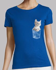 chat chaton aux yeux bleus dans la poch