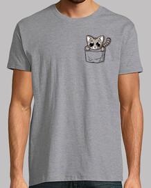 chat de poche gris mignon