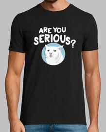 chat sérieux meme es-tu sérieux
