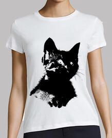 chaton contour noir
