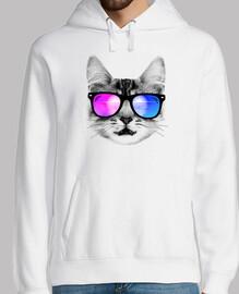 chaton de plage cool