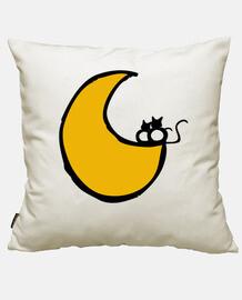 chatons sur la lune